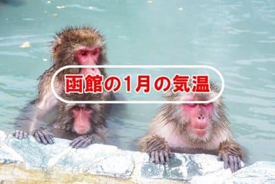 函館の1月の気温