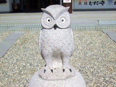 函館護国神社のなでふくろう